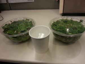 David-Moss-Salad-1